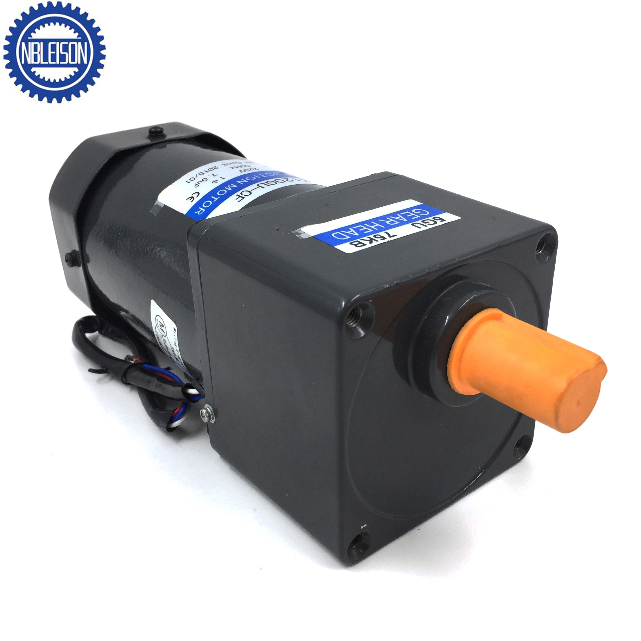 120W Reinfored Ac Induction Motor