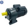 22mm Shaft Diameter 100W-700W Ac Gear Motor
